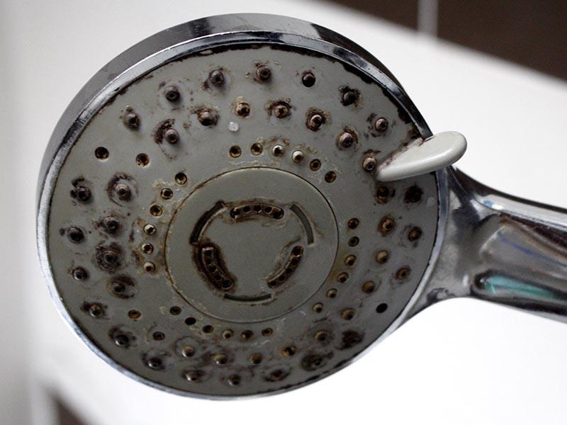 calcare soffione doccia